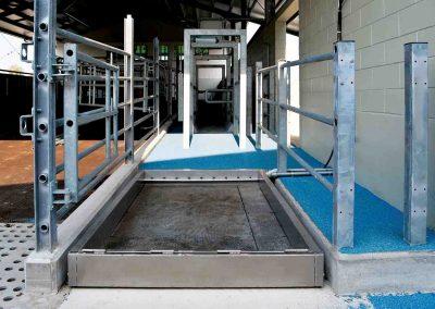 TDM – vaschetta di lavaggio podale automatica