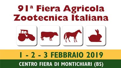 FAZI – MONTICHIARI (BS) ITALY 1-3 FEBBRAIO 2019